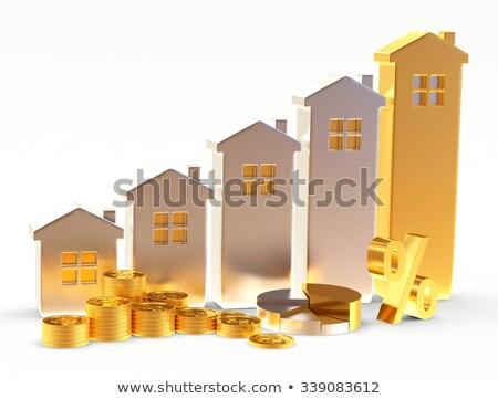 house and percent on white background. Isolated 3D illustration Stock photo © ISerg