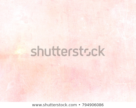 vintage faded light pink background  Stock photo © lightpoet