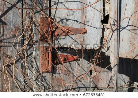 rysunku · opuszczony · domu · pustym · pokoju · wyblakły - zdjęcia stock © sirylok