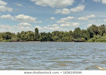 Danubio panorama scenico rocce fiume Foto d'archivio © simply