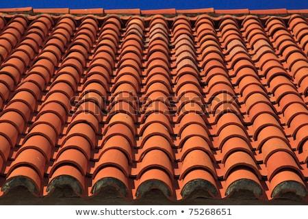 Roof tile detail - Dubrovnik Stock photo © danielgilbey