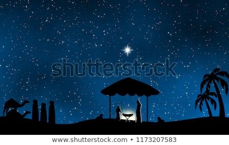 Stil nacht bijbel star palmboom Stockfoto © lkeskinen