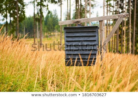 forest protect against tree pests Stock photo © MiroNovak