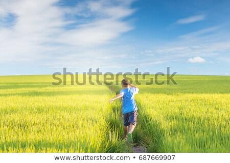 criança · grama · menino · relaxante · dias · de · verão · verão - foto stock © photography33