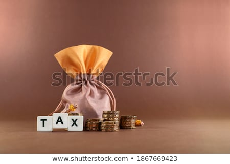 banking - written with coins on white background Stock photo © pterwort