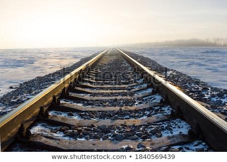 snowbound rails in winter Stock photo © meinzahn
