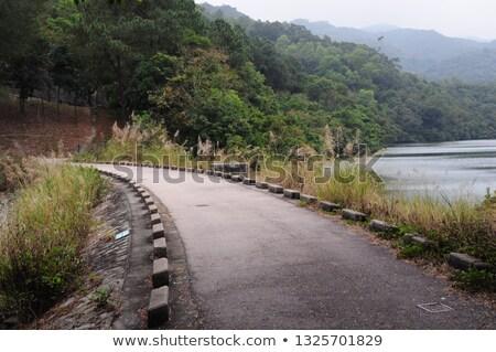 Reservoir in Hong Kong Stock photo © kawing921