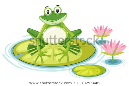 Frog and Lily Pad Stock photo © rhamm