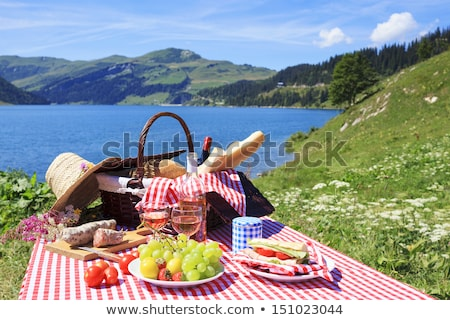 picnic in french alpine mountains Stock photo © vwalakte