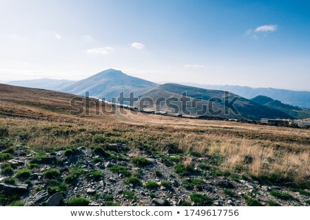 Pipelines in a vulcanic landscape Stock photo © Hofmeester
