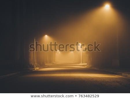 solitário · árvore · manhã · névoa · vazio · campo - foto stock © nneirda