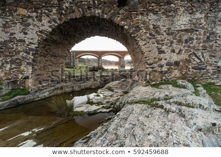 aliseda roman bridge stock photo © lianem