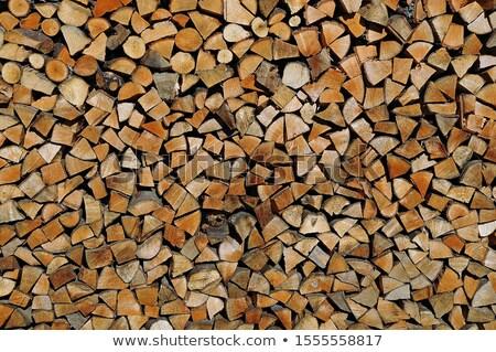 Köteg tűz fa tűzifa erdő kész Stock fotó © gewoldi