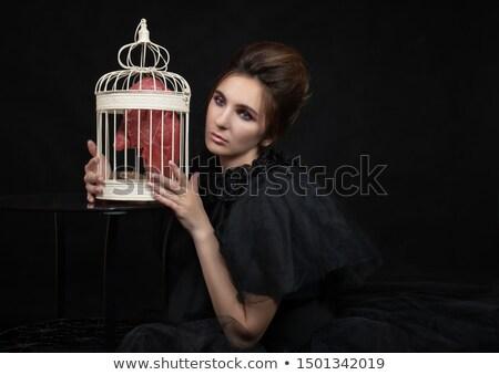 Conceptual picture of a woman with the hair theme. Stock photo © konradbak