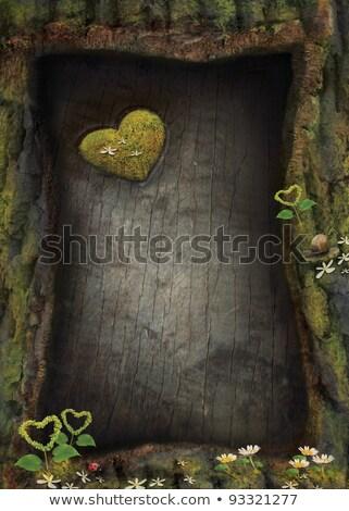 Kalpler havlama yosun ahşap düğün sevmek Stok fotoğraf © Zerbor