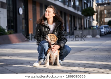 Dog with her paw in the air stock photo © suemack