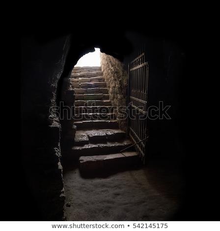 Сток-фото: старые · каменные · лестницы · вход · двери · улице