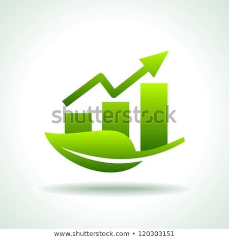 Graph Green Vector Icon Design Stock photo © rizwanali3d
