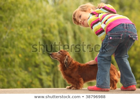 cute · petite · fille · chien · ami · animal · fleur - photo stock © paha_l