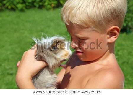 ребенка · морская · свинка · портрет · смеясь · девочку · белый - Сток-фото © paha_l