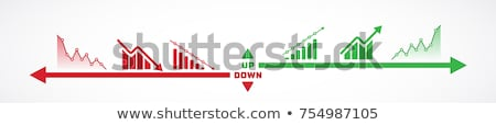 Bar chart with up and down arrows Stock photo © RAStudio
