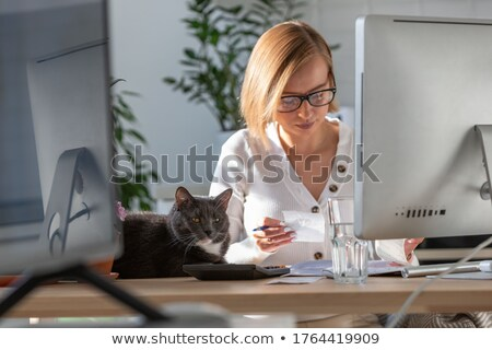 somnolent · chat · bureau · propriétaire · tapant · portable - photo stock © stokkete