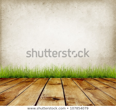 A green stonewall background Stock photo © bluering