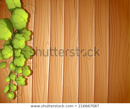 a wooden wall with a vineplant stock photo © bluering