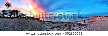 Beatiful Sunny Beach day in Formentera Spain. Stock photo © DavidArts