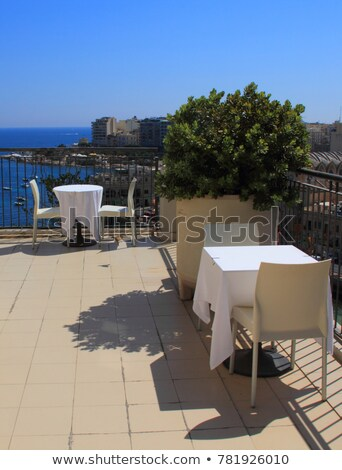 Relaxar conjunto jardim terraço cadeiras flores Foto stock © compuinfoto