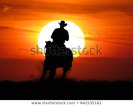 rodeo cowboy silhouette at sunset stock photo © adrenalina