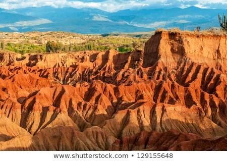Piros dombok sivatag Colombia napfény természet Stock fotó © julianpetersphotos