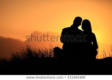 bruiloft · illustratie · vis · zee · paar · huwelijk - stockfoto © adrenalina