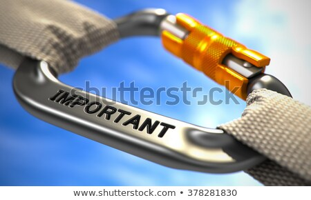 Chrome Carabiner Hook with Text Important. Stock photo © tashatuvango