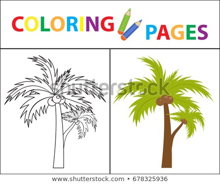 coloring book page palm sketch outline and color version coloring for kids childrens education stock photo © lucia_fox