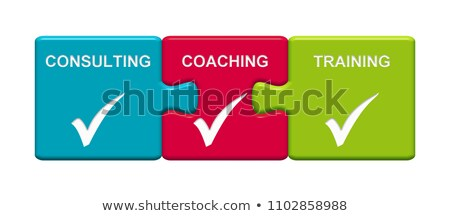 Business Coaching Button. Stock photo © tashatuvango