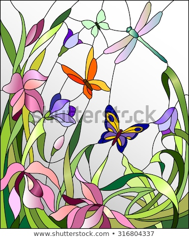 Stained Glass Flowers Butterfly Stock photo © lenm