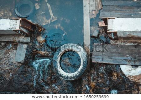 廃棄物 · 池 · ビーチ · 自然 - ストックフォト © AlisLuch