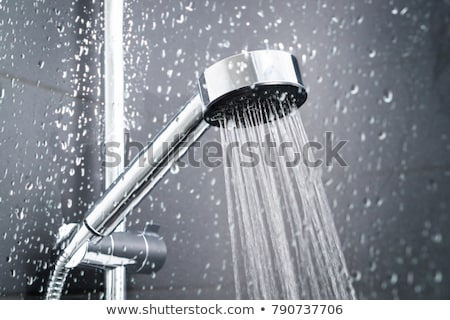 Shower head in the bathroom stock photo © vapi