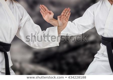 Kobiet myśliwiec karate postawa biały Zdjęcia stock © wavebreak_media