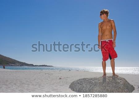 Fiatal áll kő homokos tengerpart fű jókedv Stock fotó © IS2