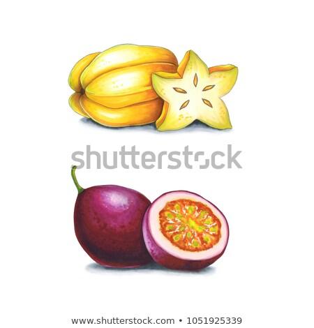 Pasión frutas blanco boceto alcohol pueden Foto stock © user_10003441