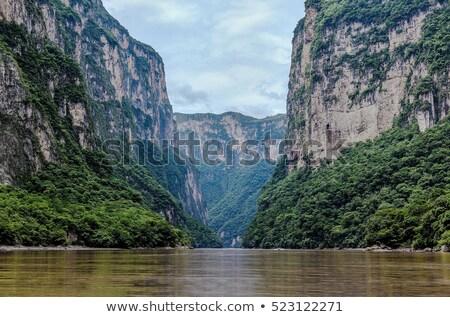 Krokodil kanyon édesvíz állat veszély Mexikó Stock fotó © THP