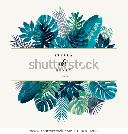 Tropical leaf border Stock photo © PurpleBird