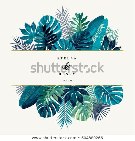 тропические · лист · границе · вектора · листьев · белый - Сток-фото © PurpleBird