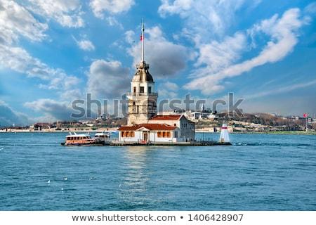 Hajadon torony Törökország sirály repülés Isztambul Stock fotó © Givaga