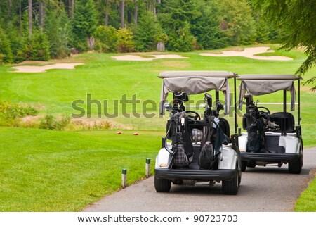 Golf kezdet csetepaté felfelé kész verseny Stock fotó © searagen