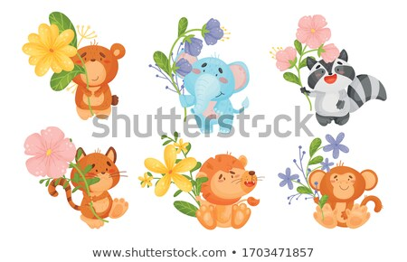 Cartoon wasbeer illustratie dier Stockfoto © cthoman