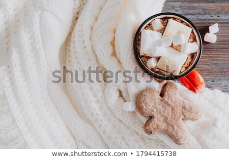 mug of cacao with marshmallows and cookies stock photo © dash