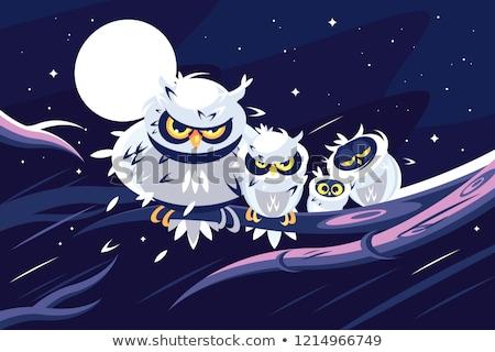 Owls sitting on branch in front of full moon. Stock photo © jossdiim